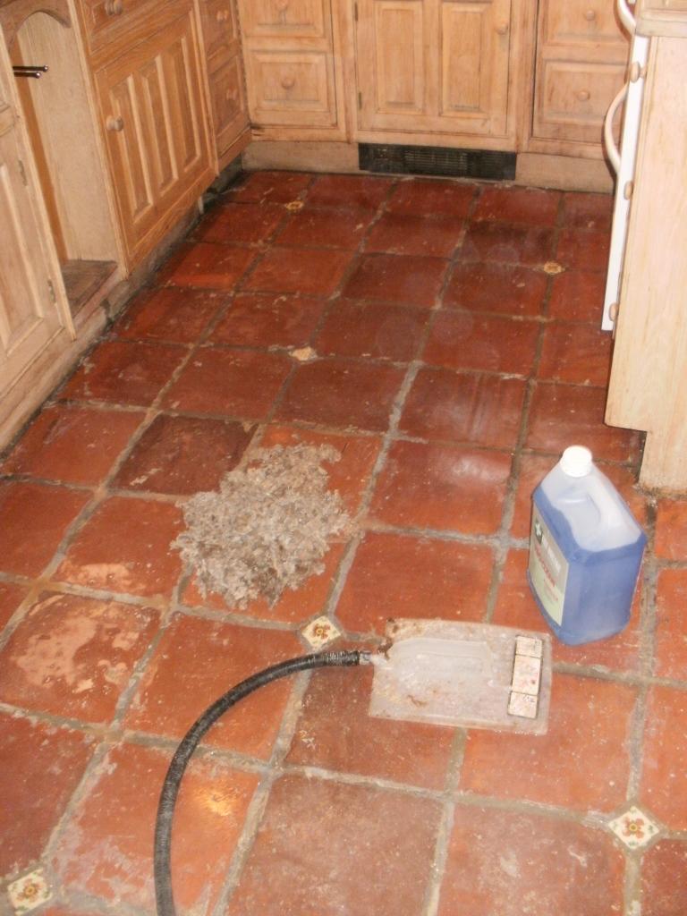 Terracotta Floor During