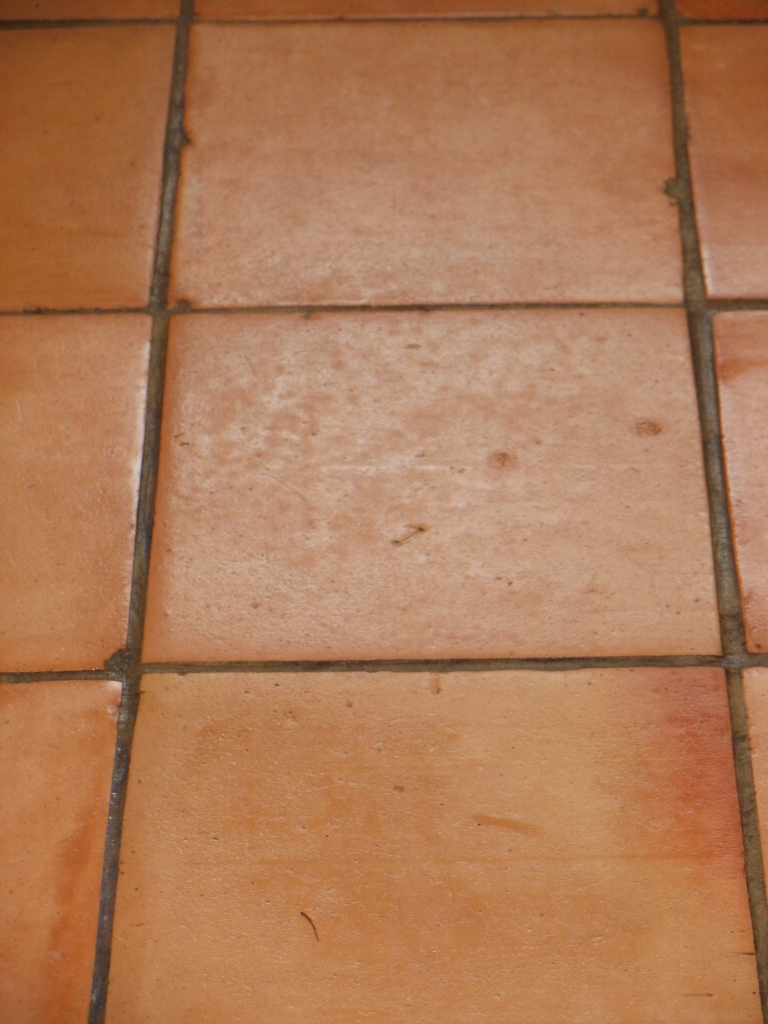 Terracotta Tile Before Cleaning in Tooting